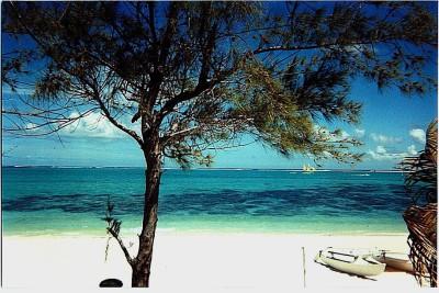 Ne rien manquer de l'île Maurice, le joyau de l'océan Indien. cropped-Plage-Ile-Maurice1.jpg